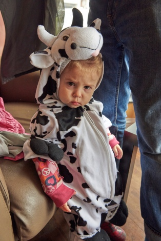 Gwen appears to be a mad cow.
