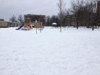 School yard changes at Woodroffe Avenue Public School